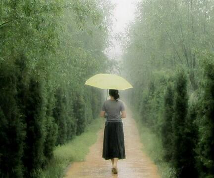 【婉若倾城】这一场雨(组诗)